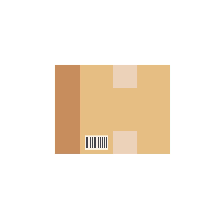 HOST ICON-01